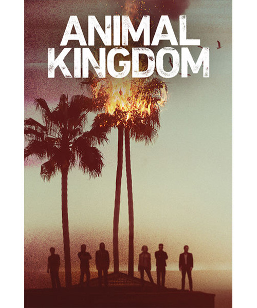 ANIMAL_KINGDOM_X_SITO